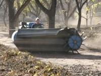 Pecan farmers in harvest mode