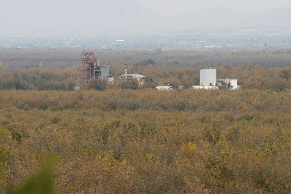 Stahmanns pecan shelling plant